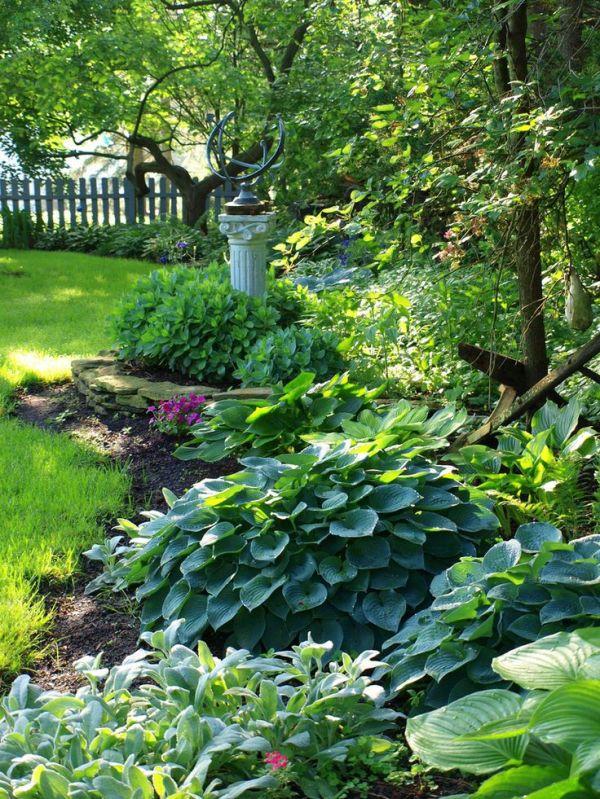 hostas garden ideas