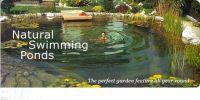 Natural swimming pond | Landscaping | Pinterest