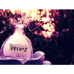"""""""a DREAM is a WISH your HEART makes"""" - cinderella"""