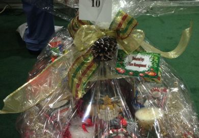 Christmas Raffle Basket Theme Ideas