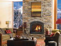 Heat and Glo Cerona Gas Fireplace | FIREPLACE | Pinterest