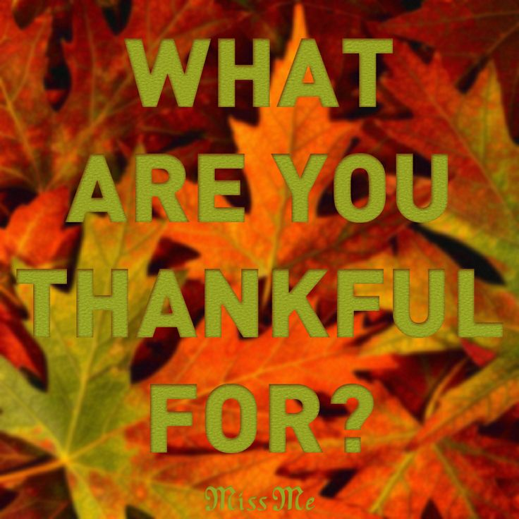 What are you thankful for this #Thanksgiving? #MissMeJeans