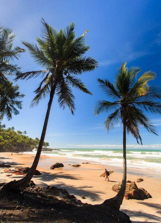 Praia Jeribucaçu - Itacaré, Bahia, Brasil  (by Tom Alves)