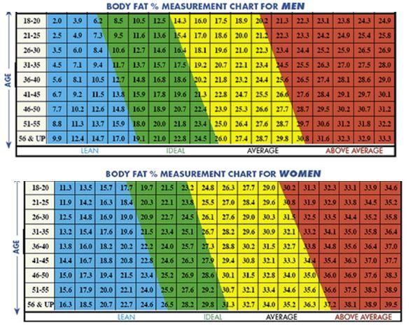 Ideal Body Fat Percentage Chart   La Petit Femme   Pinterest