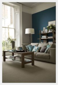 teal accent wall   Living Rooms   Pinterest