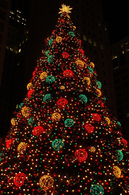The big Chicago Christmas Tree