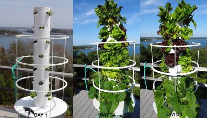 Aeroponic tower garden aeroponics pinterest