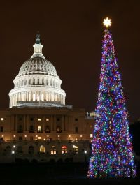 Best 28+ - National Christmas Tree In Washington Dc ...
