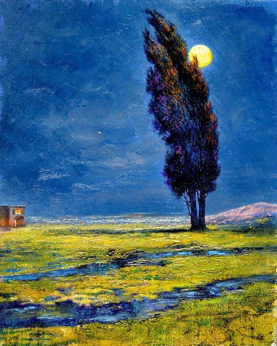Antonio Nunziante: La notte della luna, 2011