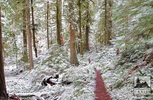 Image result for washington trails assocation