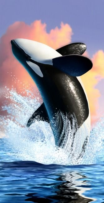 Orca byJerry LoFaro - digital painting - 2008