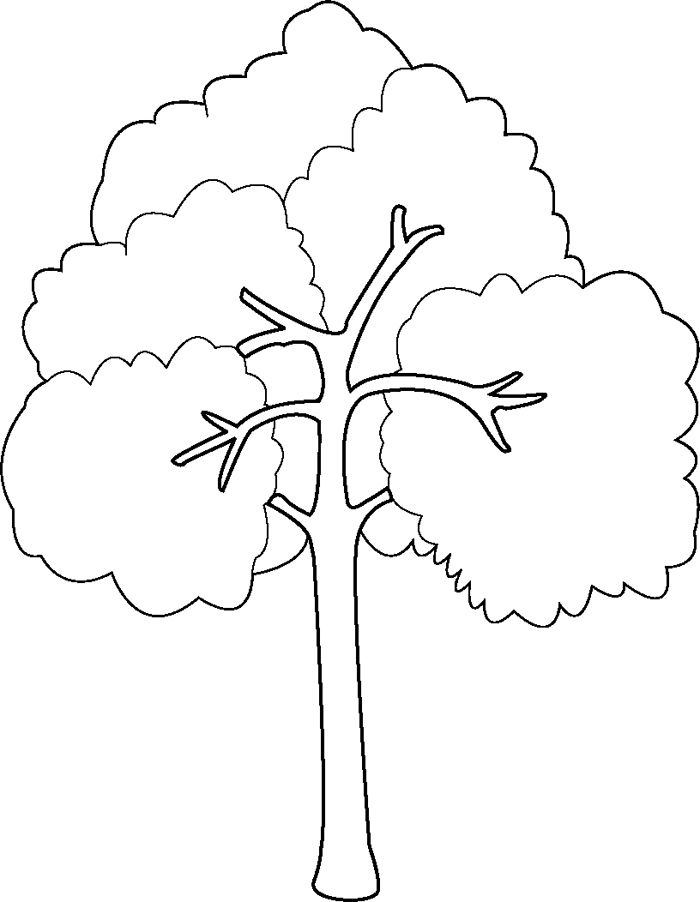 bare tree  branches coloring page sketch coloring page