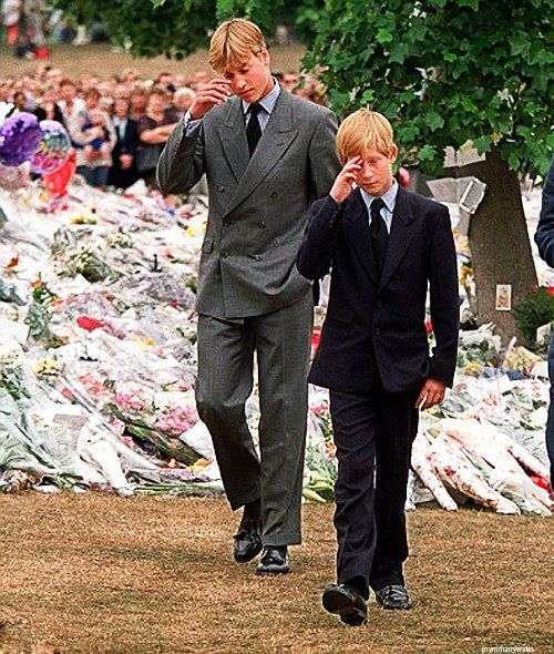 Princes William & Harry...Heartbroken