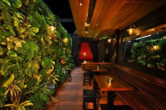 The living wall at the Red Hummingbird Bar at Sky City Casino. A scene in Sweet Seduction Sabotage.