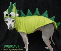 Dog Dragon Costume
