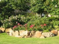 Landscaping Ideas For Backyard In Texas | Mystical Designs ...