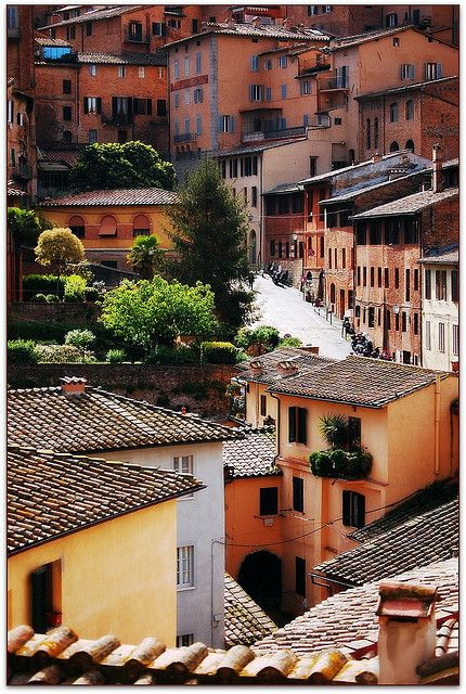 Sunny street in Siena, Tuscany  | by © Noelle Smith