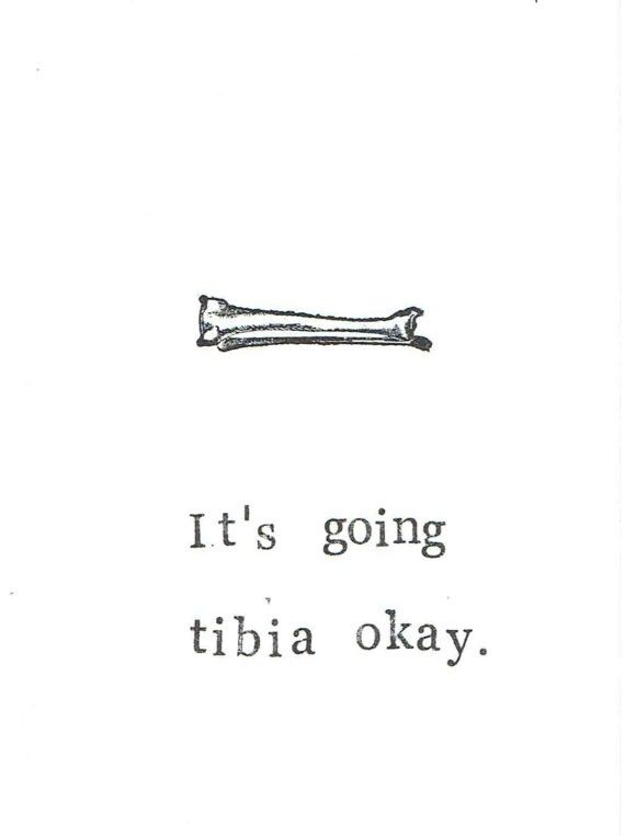 Anatomy Greeting Cards