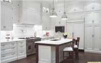 Kitchen; exposed hinges on cabinets   House   Pinterest