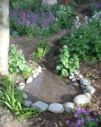 Pinterest Garden Ideas Rocks Photograph | rock garden- | Yar
