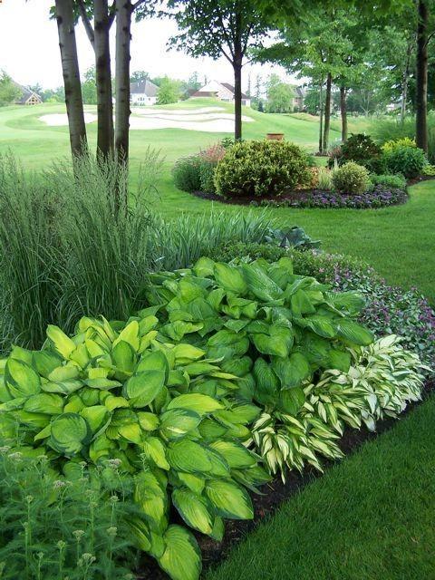 hosta bed awesome garden ideas