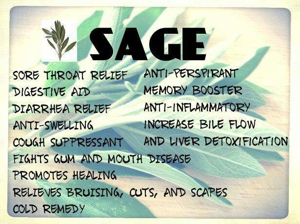 #health benefits of #sage   Nutrition and Healthy Eating ...