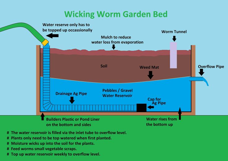 Raised Bed Vegetable Garden Designs