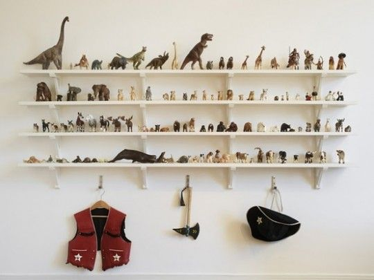 dinosair collection