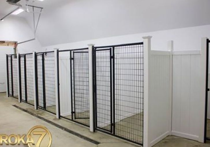 Interior Design Ideas For Dog Kennels