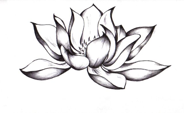 Brandon Boyd Art Flowers