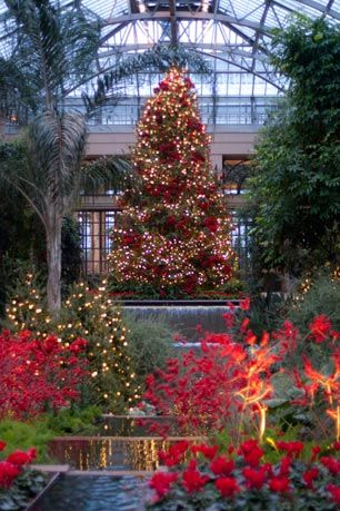 Christmas at Longwood Gardens, PA