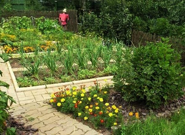 26 Plain Landscaping Ideas Hill Gardens – Thorplc Com