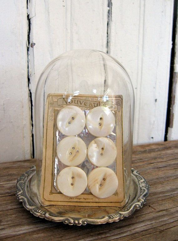 buttons in a cloche
