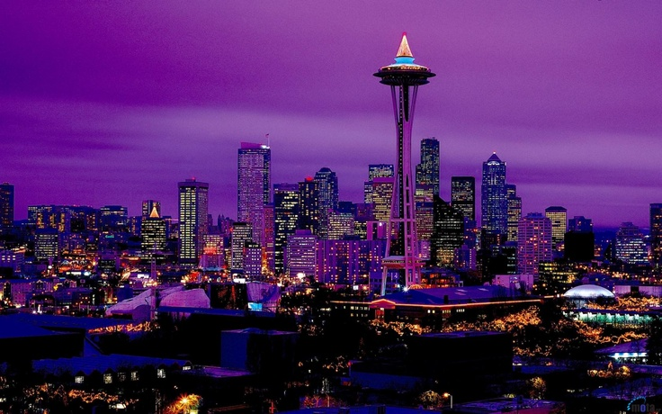 Seattle Seahawks Christmas Lights