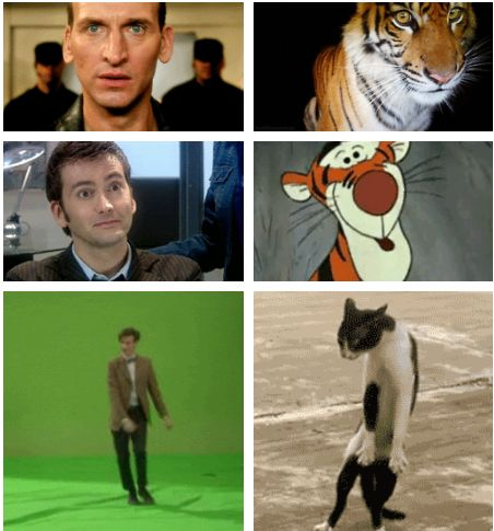 """""""Eccleston was a tiger and Tennant was, well, Tigger. Smith is an uncoordinated housecat who pretends that he meant to do that after falling off a piece of furniture.""""  — Steven Moffat"""