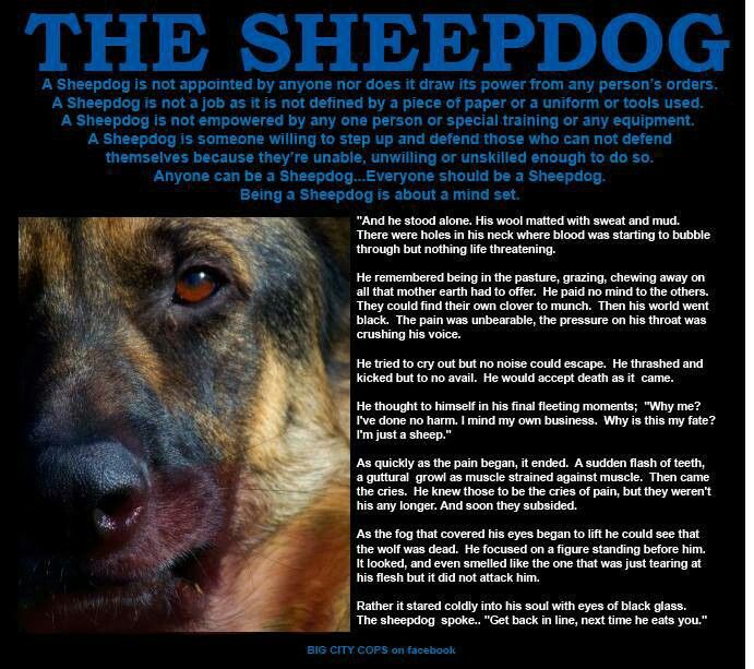 Wolf And Sheepdog Quote Wallpaper Sheep Dog Quotes Quotesgram