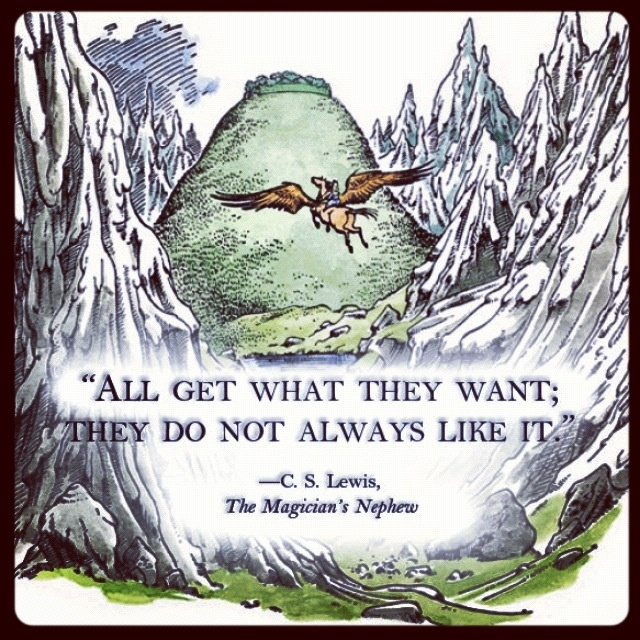 C.S. Lewis is a genius, and all Chronicles of Narnia books are excellent. If this profound and thought-provoking quote doesn't convince you, nothing will.