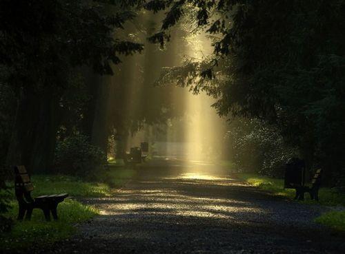 mystic nature Enchanted Beauty Pinterest