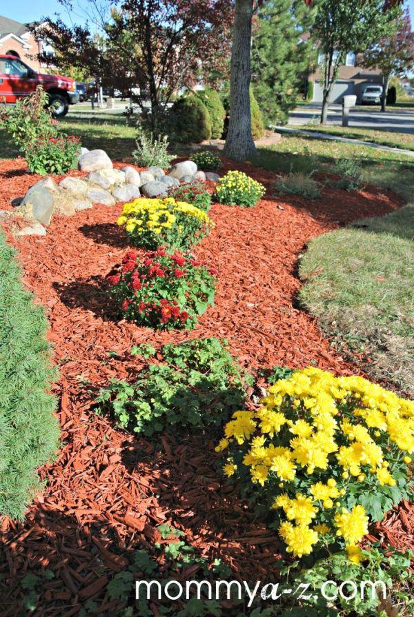 red mulch dream garden