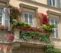 Balcony container garden | Beautiful Gardens | Pinterest