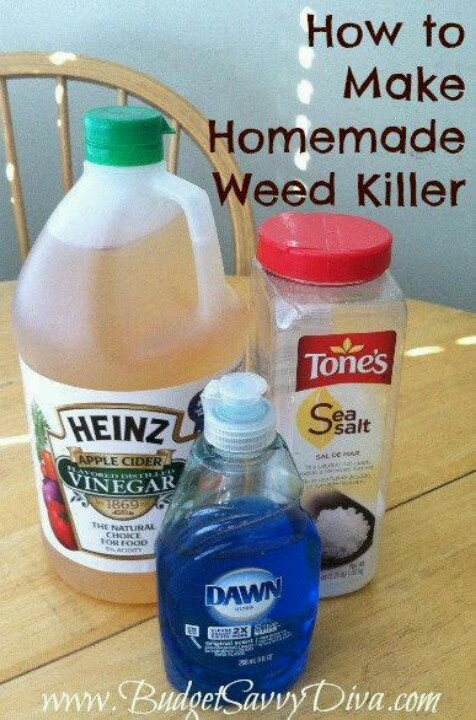 Homemade weed killer Projects to Try Pinterest