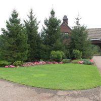 Traditional Landscape Privacy Hedges Design Ideas ...