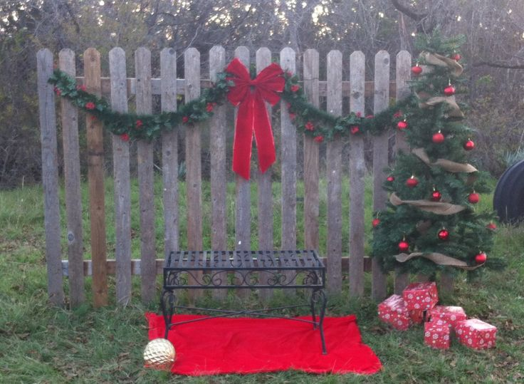 Outdoor Christmas Mini Session Ideas Lindsey Welch
