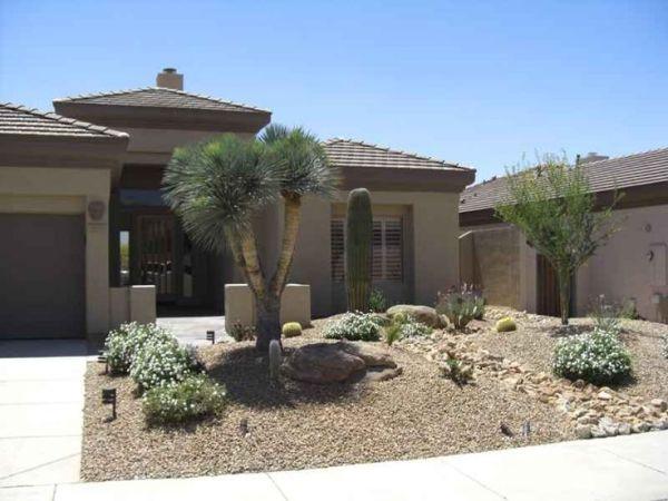 desert xeriscape landscaping