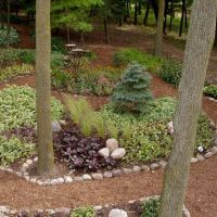 Landscaping Ideas For Backyard With No Grass | Home Office ...