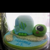 Baby Shower Cakes: Turtle Baby Shower Cake Ideas