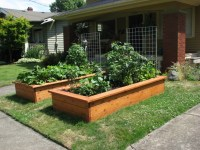 front yard raised beds | Front yard garden ideas | Pinterest