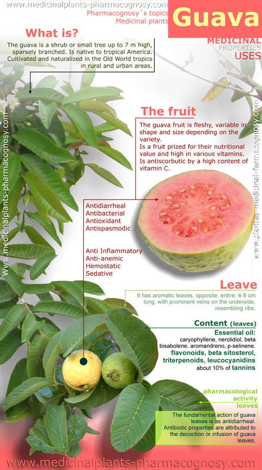 Health Benefits and uses of Guava
