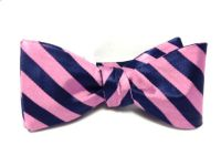 Pink and Blue Gatsby Bow Tie | Nice species (of bow ties ...