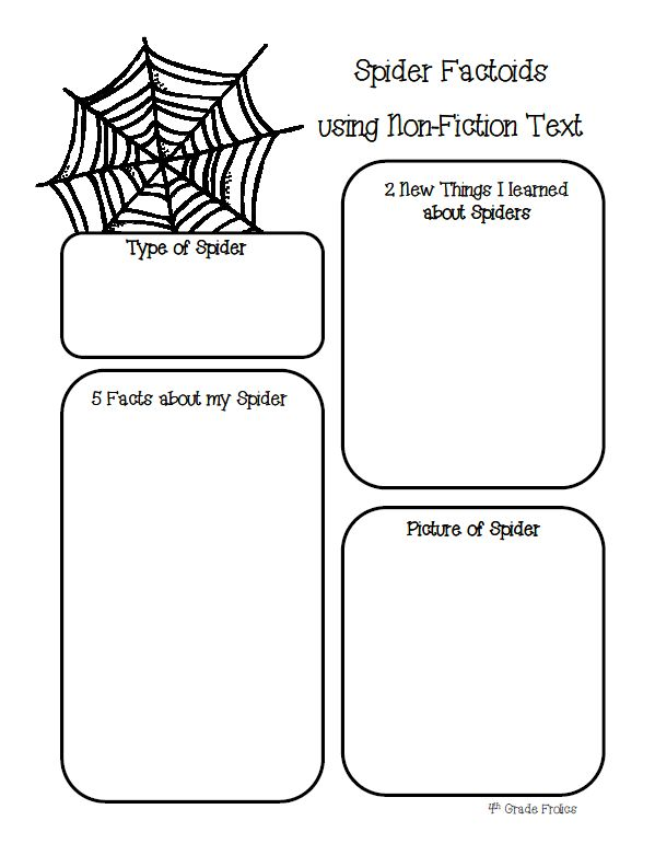 spider facts using any nonfiction text graphic organizer